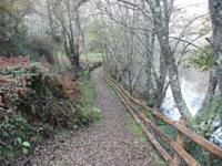 Camiño xunto ao río Arnoia