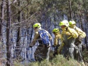 Bases para la contratación laboral temporal, a jornada completa, de trabajadores para las Brigadas de prevención y defensa contra incendios forestales